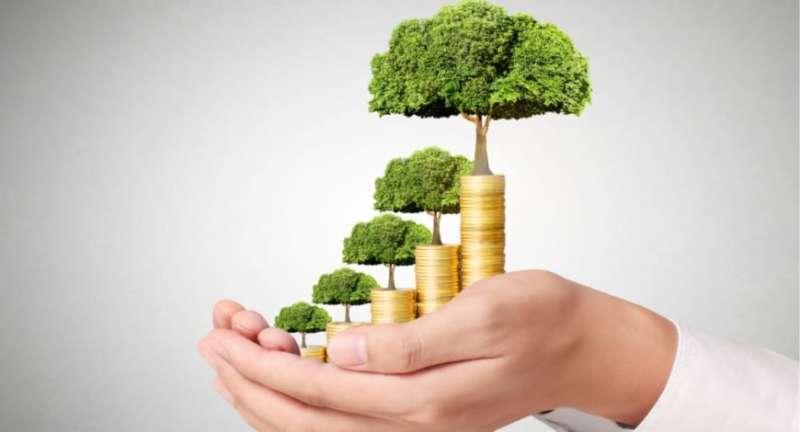 Ali lahko moja naložba v vzajemne sklade propade?